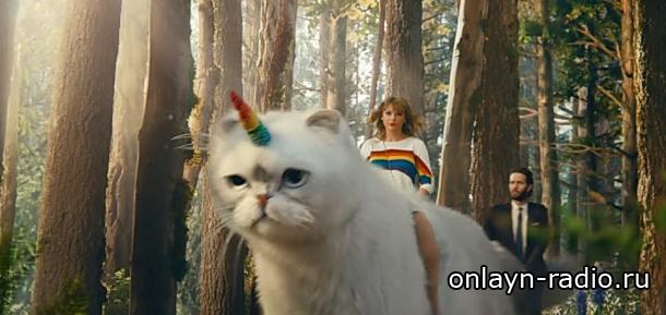 Тейлор Свифт прокатилась на коте