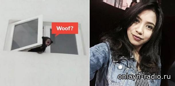 Она держала в доме медведя, а думала, что у нее собака. Певица арестована